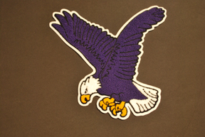 Large Eagle Chenille Back Patch for letter jacket